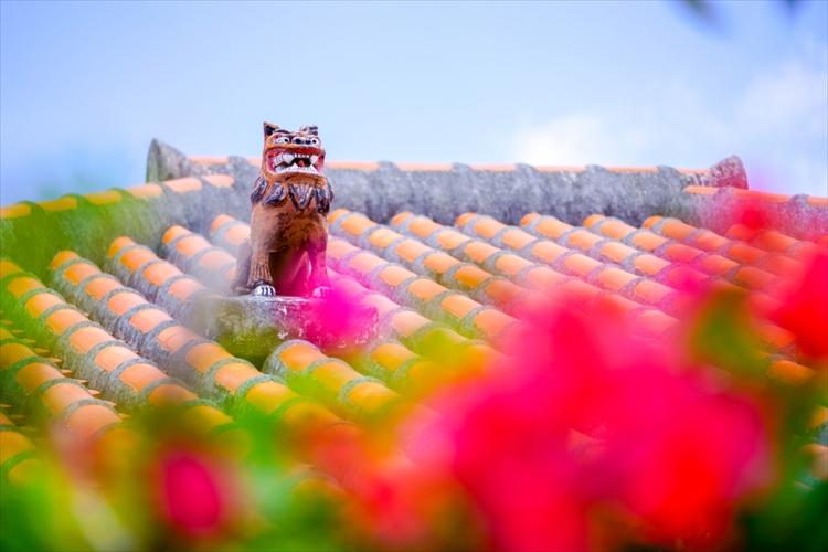 新婚旅行は沖縄へ!予算・日数別のオススメのプランと観光スポットを紹介
