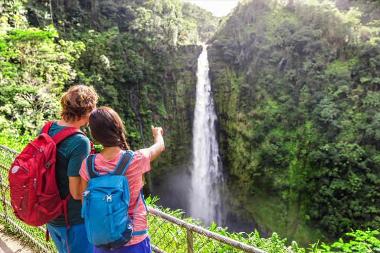 新婚旅行のハワイで楽しむオプショナルツアー