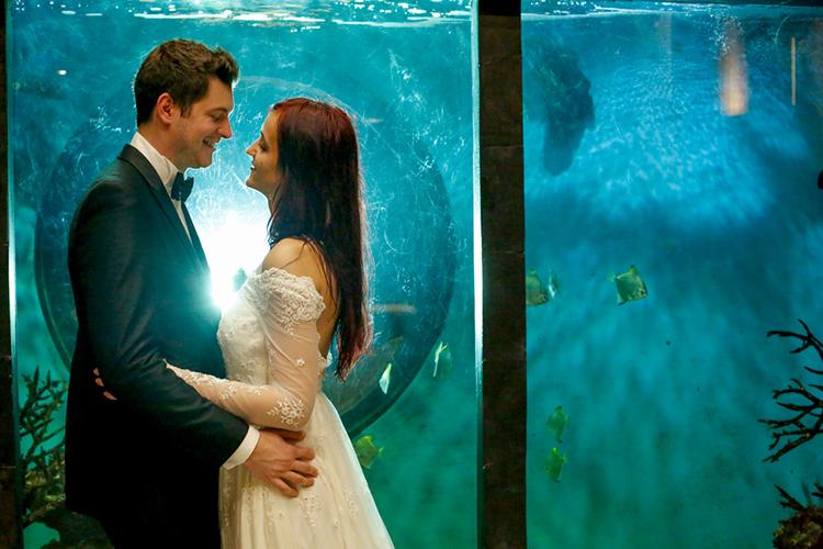 水族館で挙げる結婚式がロマンチック…♪ウェディングプランがある水族館