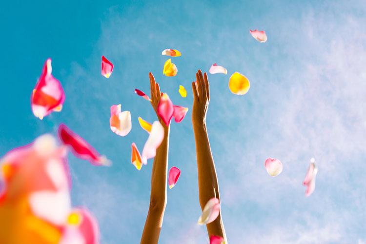 散る花びらと手