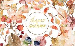 秋挙式の結婚式招待状デザイン