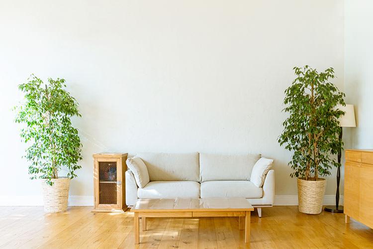 快適な新婚生活を送るための家具選びのポイント